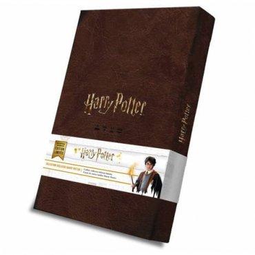 boite de jeu Coffret Collector jeux de cartes Harry Potter