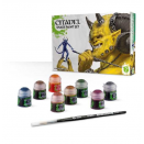 Citadel : Shade - Paint Set