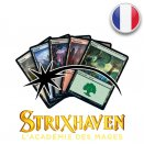 Lot de 100 terrains de base foils Strixhaven : l'Académie des Mages - Magic FR